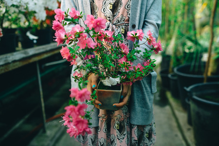 Flowers in hands Stock Photo