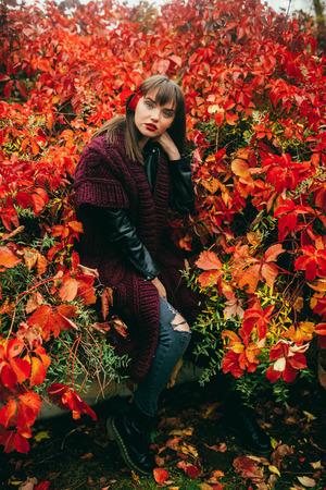 walk on the autumn city