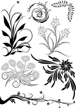 Rich collection of floral decor photo