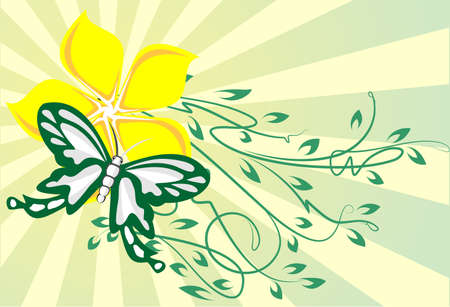 decor with butterfly  Vector