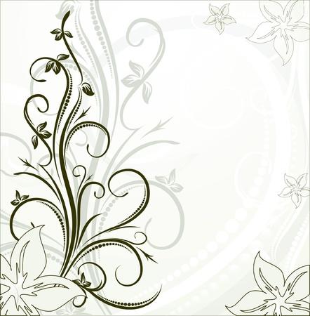 設計のための装飾的な枝 写真素材 - 10707460