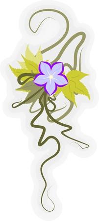 美しい花の角。