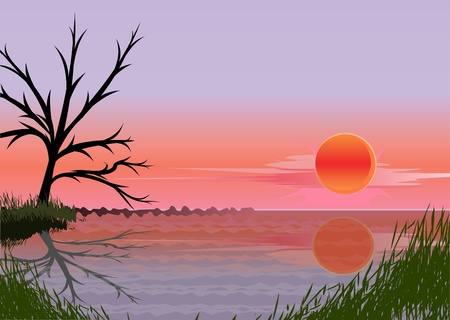 pond water: landscape with sunset (vector)