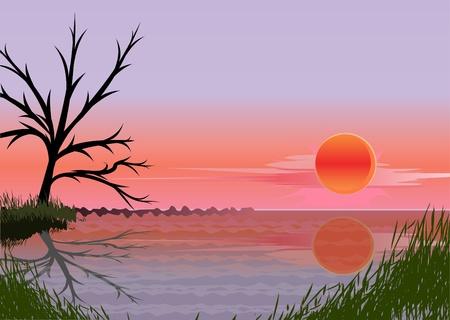 paisaje con puesta de sol (vector)