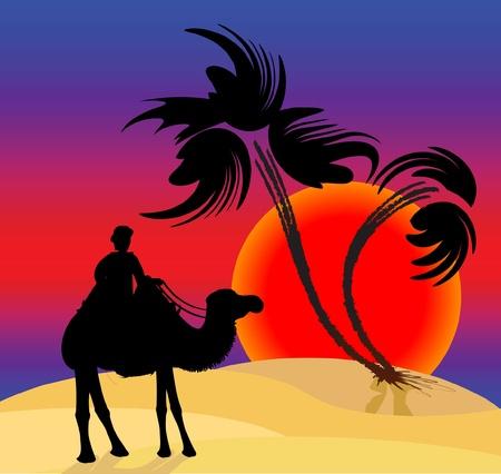 Silhouet illustratie van een kameeldrijver in de woestijn
