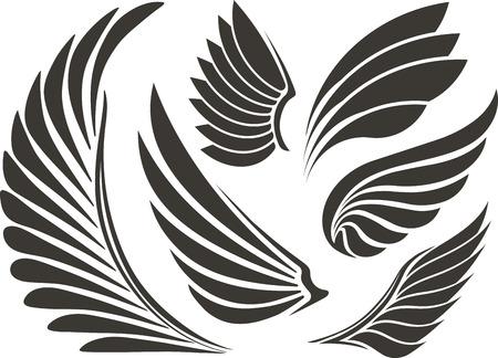 paloma caricatura: Conjunto de cinco alas Foto de archivo