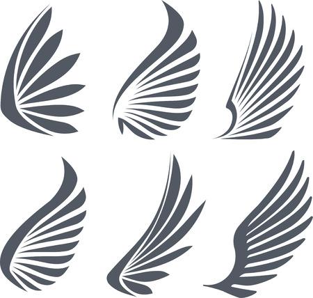 paloma caricatura: Conjunto de 6 alas vector. Foto de archivo
