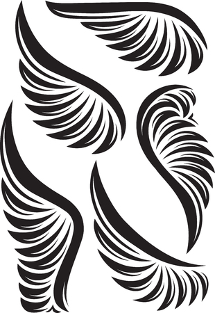 paloma caricatura: Conjunto de cinco alas vector