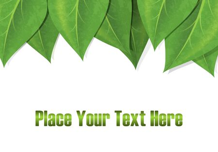 green leaves border: Horizontal background with green leaves border and empty space for text.