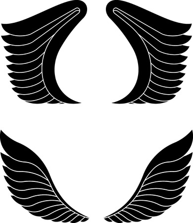 pairs: Two pairs of black wings.