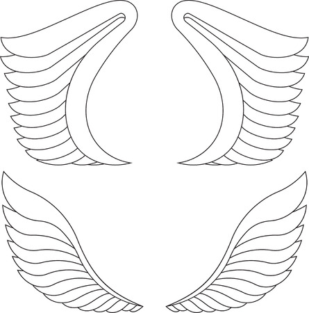 outlined: Two pairs of outlined wings.