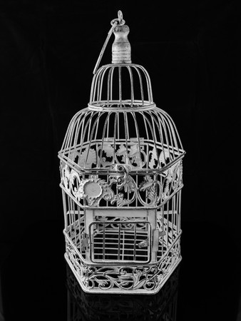 jail bird: isolated bird cage on a black background Stock Photo
