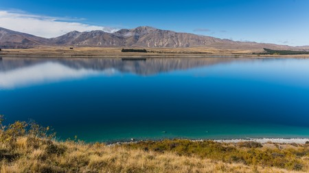 tekapo: the incredible nature of southern new zealand