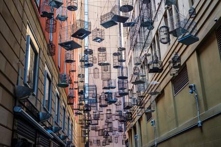 paloma de la paz: Bird Cage Callejón en Sydney, Australia Foto de archivo