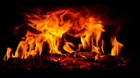 woodfire: wood burning in an open pizza oven