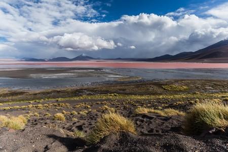 altiplano: exploring the Bolivian altiplano Stock Photo