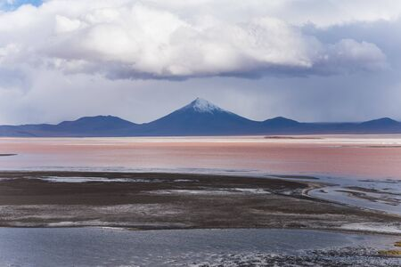 algal: red lagoon in bolivia