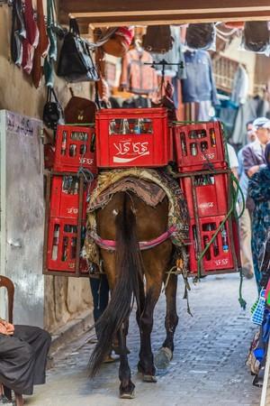 loaded: Fes, Morocco - Circa September 2015 - a heavy loaded donkey Editorial
