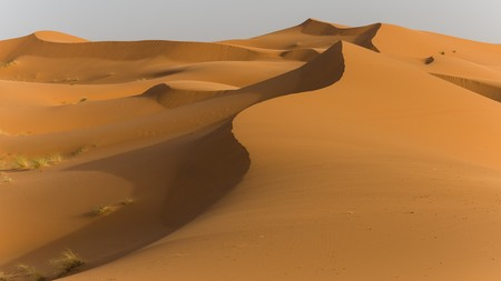sahara desert: exploring the sahara desert in morocco Stock Photo