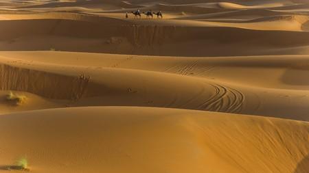 desierto del sahara: explorar el desierto del Sahara en Marruecos
