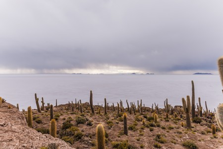 incahuasi: rain approaching over uyuni seen from incahuasi island