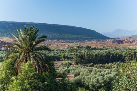 atlas: in the high atlas mountains of morocco