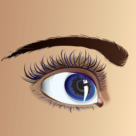 Beautiful attractive female eye with expressive look Vector