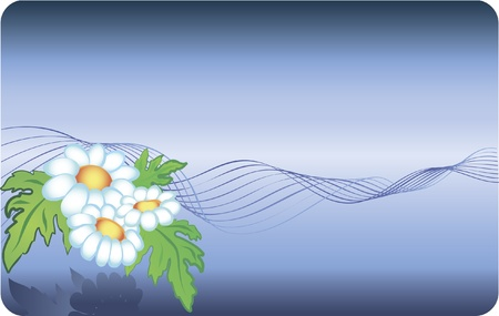 Card with chamomile background and abstract lines Vector
