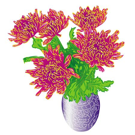 bouquet asters in vase, isolated on white background Illustration