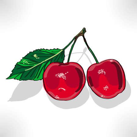 red cherry Illustration