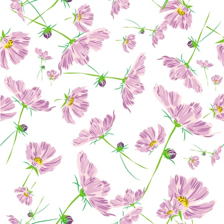 rose flower pattern cosmos isolated on white background  Vector