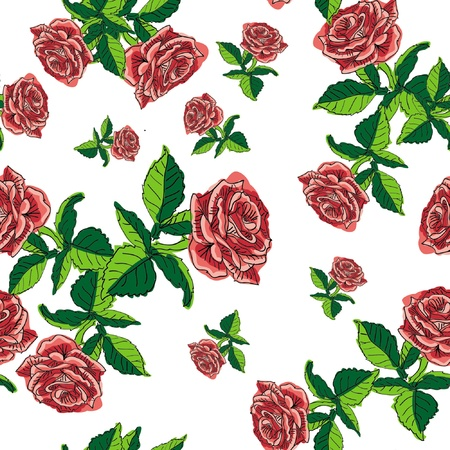 Pattern of the rose on white