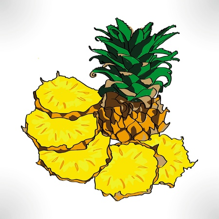 pineapple , isolated on white background Stock Vector - 14807347