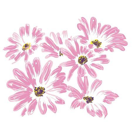 rose daisywheels, isolated on white background  Illustration