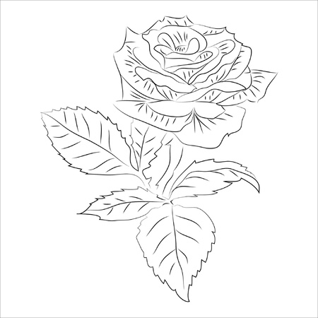 tattoo rose small contour isolated on white background