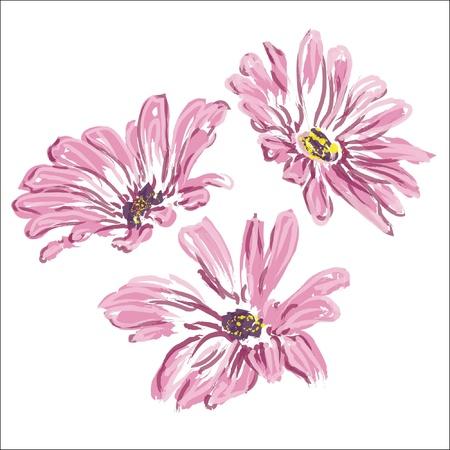 three rose daisywheels isolated on white background