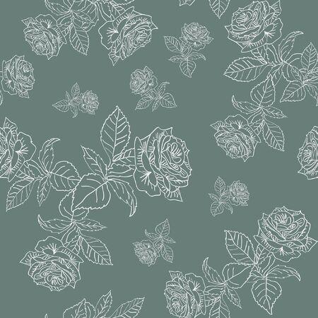 pattern white contour roses on gray background  Illustration