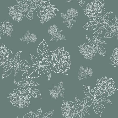 pattern white contour roses on gray background  Illustration