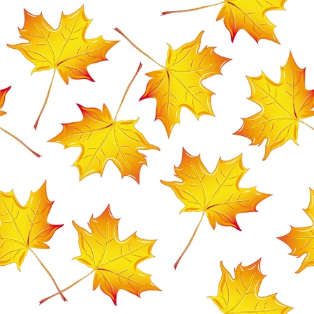 pattern maple leaf yellow, isolated on white background raster Vector