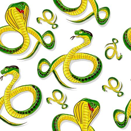 snake python, isolated on white background  Vector