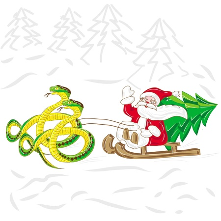 Santa Klaus with fir tree goes on sled with snake , isolated on white background