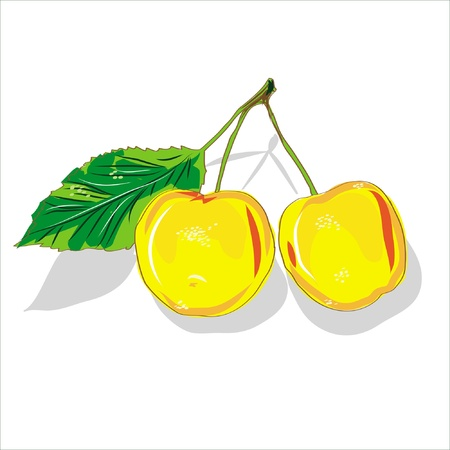 yellow cherry isolated on white background Illustration