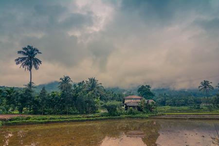 beautiful landscape- rainy season Stock Photo