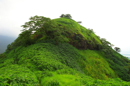 The green grassy landscape of the hills of Western ghats at Kailashgad fort, Tahmini ghat, Maharashtra, India on a monsoon day. Banco de Imagens