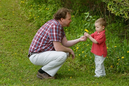 Father and Son explore Dandelions growing in a field.