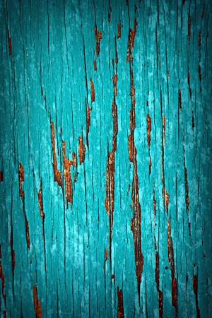 flaky: A detailed close up macro photograph of peeled paint on a wood substrate.  A great texture image for a background or overlay.