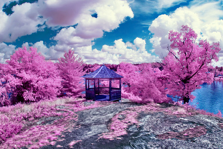 Photographed with a 665nm near infrared converted camera, this image depicts a magical spring like scene