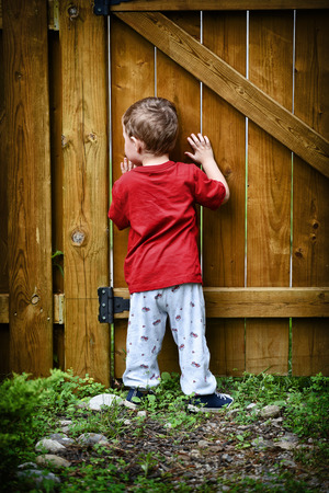 A small peeping toddler peers out of a hole in the fence at the world beyond his backyard