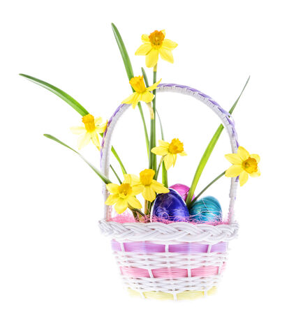 Daffodils and Easter eggs in a pastel colored basket isolated on white.  photo