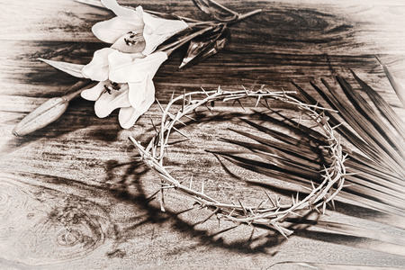 relating: A sepia toned black and white image depicting Christian religious icons relating to Easter - the palm branch, the crown of thorns, and the white Lily.  Process for an aged vintage look.
